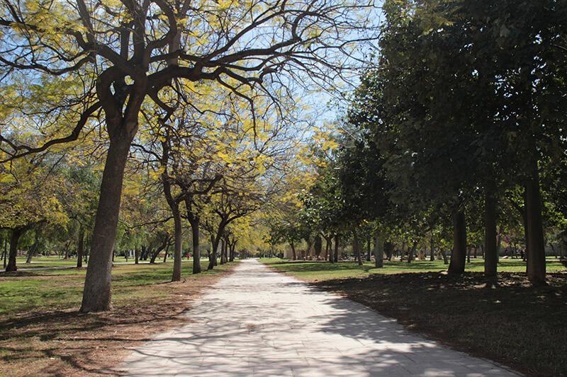 Parco del Turia Valencia