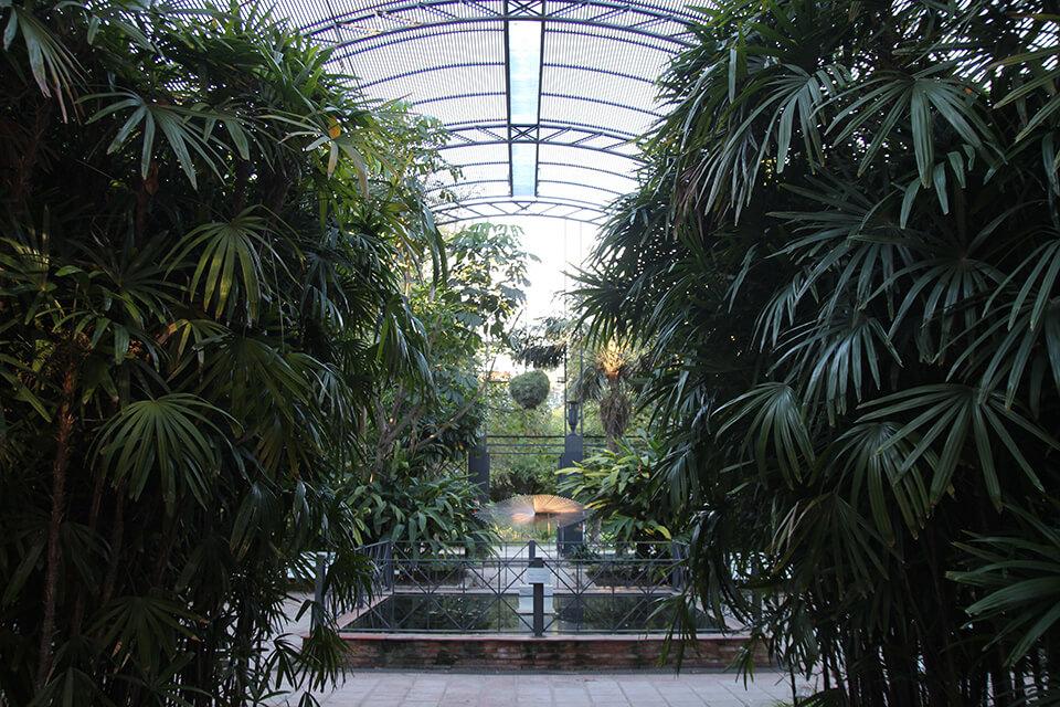 Giardino botanico Valencia orari